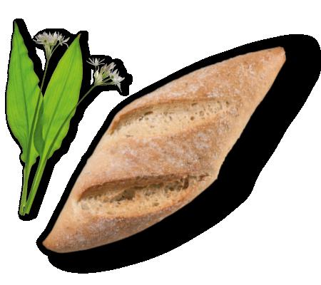 Guschlbauer-Backwaren-oesterreich-broetchen-baerlauchspitz